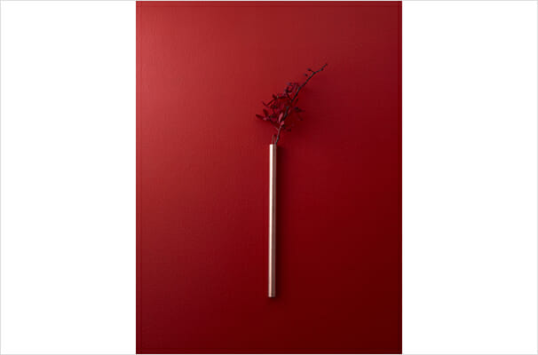 RED&WHITE (2)