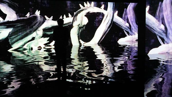 追われるカラス、追うカラスも追われるカラス、そして分割された視点 ── Light in Dark