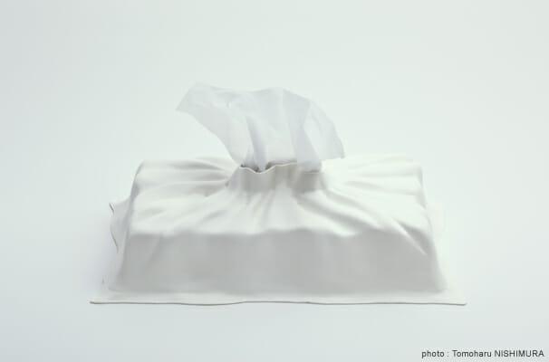 Drape Cover