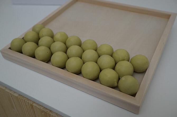LEXUS – A JOURNEY OF THE SENSESl、木になる部屋で食べるのはお団子大の木の実のようなもの