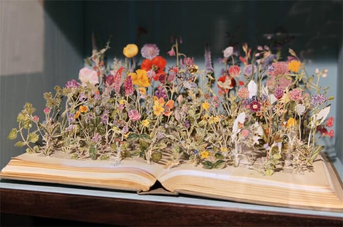 野性の花 No.10 / 2014年(イギリス諸島の野性の花より)