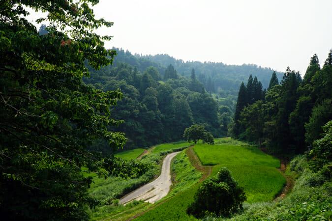 山々に開かれた田んぼの風景