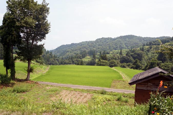 「名ヶ山写真館」からの眺め。美しい棚田が広がる