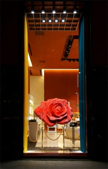 Rose rouge (1)