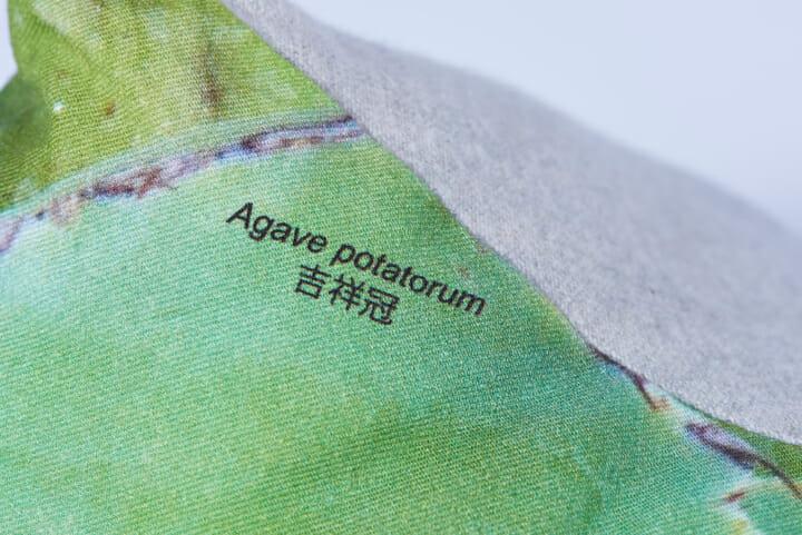 植物に興味を持ってもらえるように植物の学名および和名、品種名などがクッションの一部に記載されている