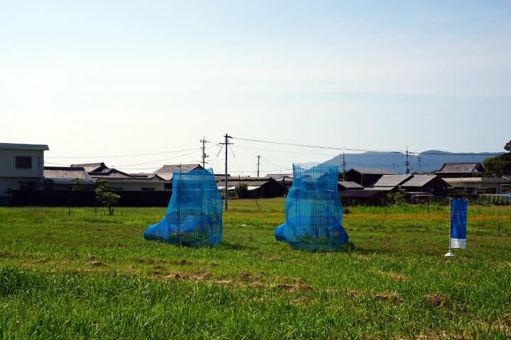 アートを通じて瀬戸内の人々の暮らしの営みを感じられる小豆島 − 瀬戸内国際芸術祭レポート(2)