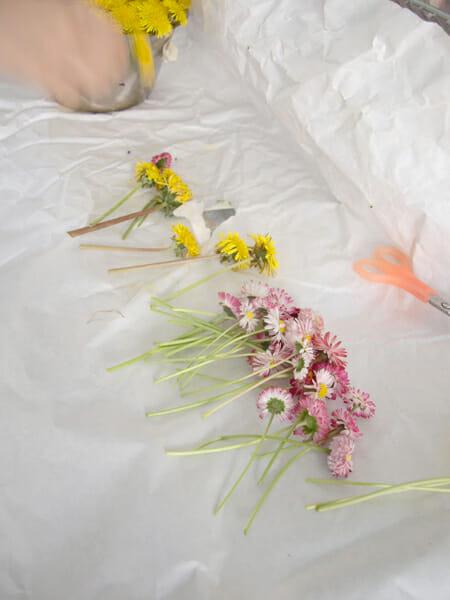 花のカーテン (2)