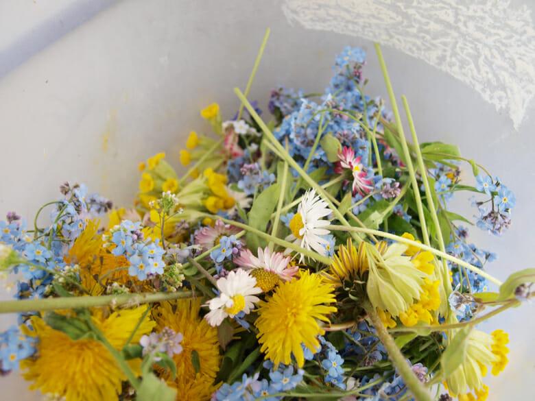花のカーテン (3)