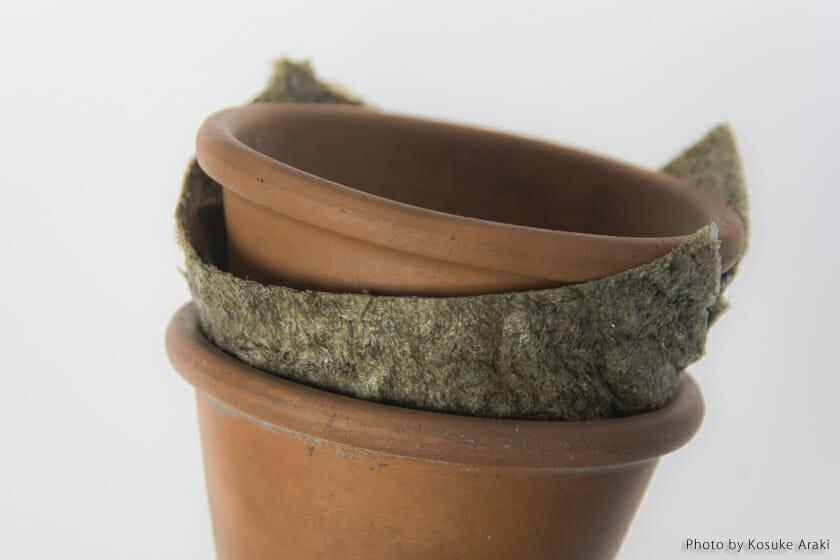 煮出した液だけでなく、テングサの残りかすも使用したタイプの梱包資材