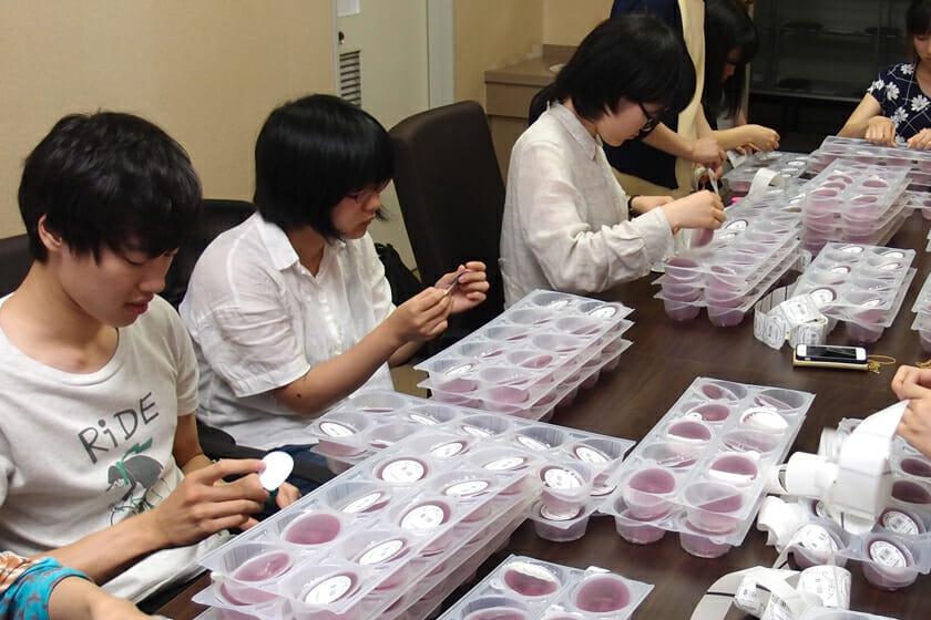 次年度参加メンバーも手伝って大量の生産作業が行われました。写真はゼリーひとつひとつにシールを貼っているところ