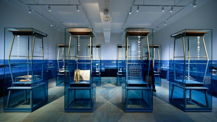展示室3「ふじのくにの海」