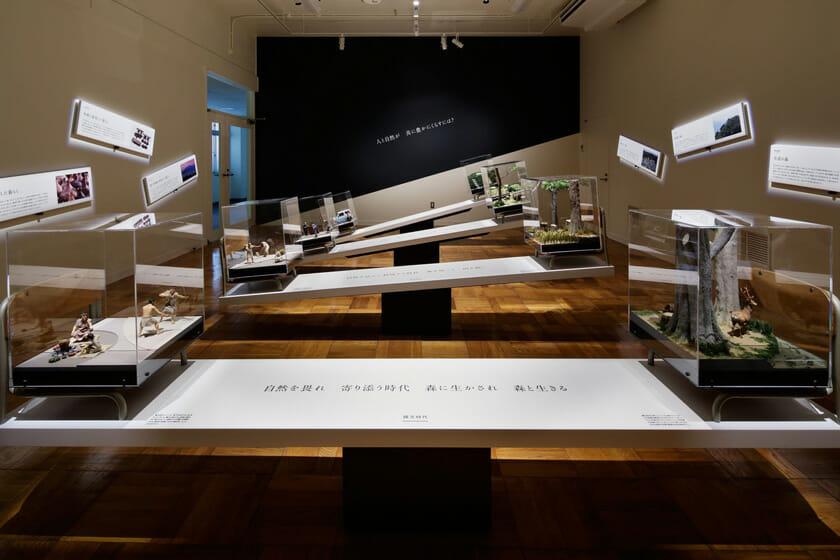 展示室5「ふじのくにの環境史」