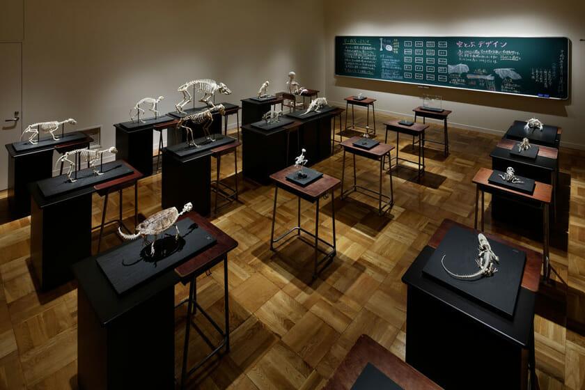 展示室8「生命のかたち」