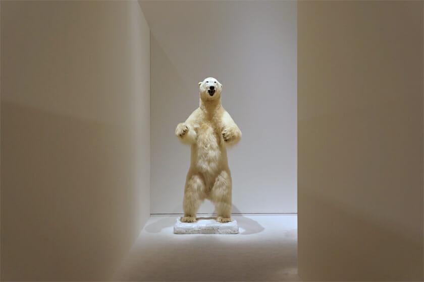 展示室の角を曲がったところに出現する、シロクマの立像剥製