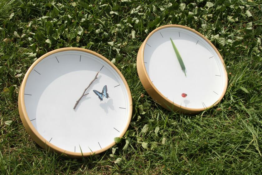 とまり木の時計/1時間に1度、虫が植物に止まるようになっている。単なる針の交差に、ほんの少しデザインを加えたことで特別な意味を持った時計に