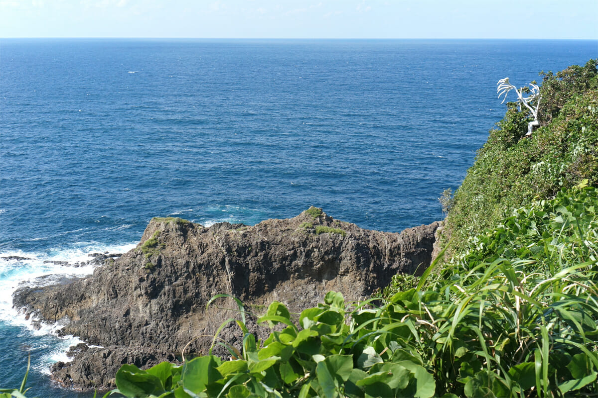 陸にあがる(鴻池朋子)。本当に崖ぎりぎりの場所に設置されています…!遠くから発見したときは鳥肌が立ちました