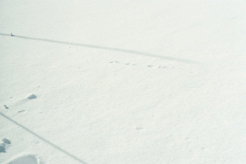#1 冬の足元