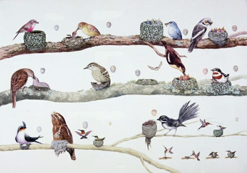 『世界の鳥の巣の本』(岩崎書店)
