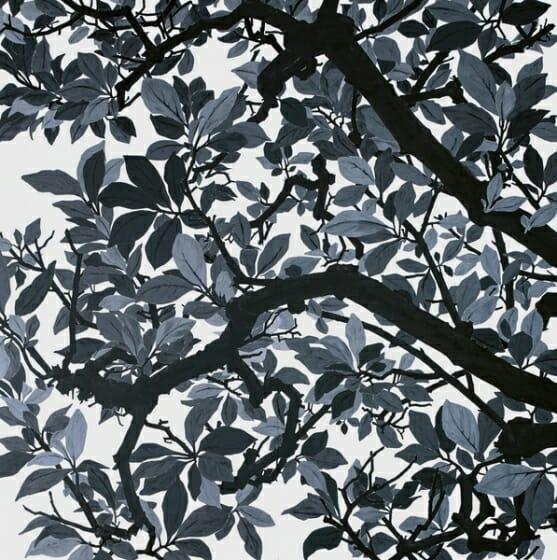 日高理恵子 Rieko Hidaka 空との距離XIV 2017 pigment on paper 240.0 x 240.0 cm© Rieko Hidaka Courtesy of Tomio Koyama Gallery