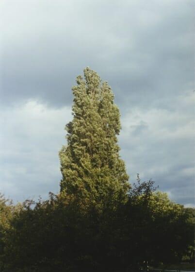 川瀬一絵 写真展「風が吹いている」