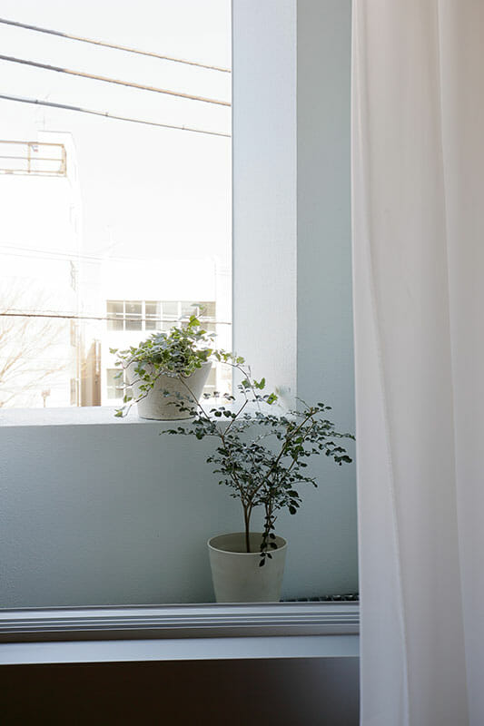 二重窓の集合住宅 (2)