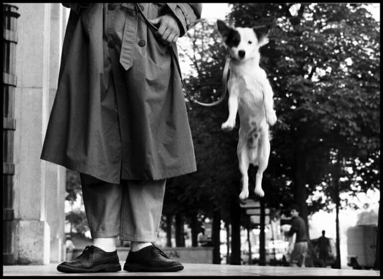 Paris, 1989 © Elliott Erwitt / Magnum Photos