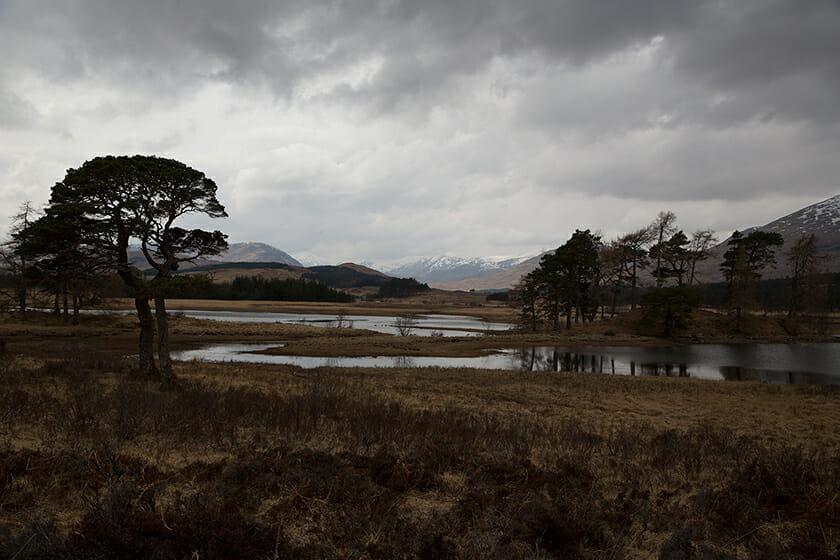 グレンコー [スコットランド] ©写真 上田義彦