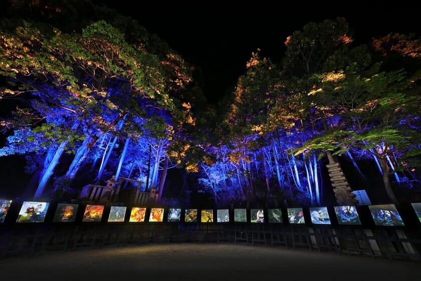 チックタック~約束の時計台~ 光る絵本と光る満願寺展