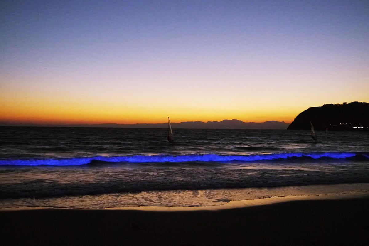 NightWave 光の波プロジェクト (3)