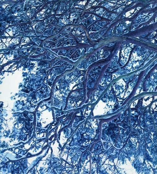 藤田はるか写真展「winter」