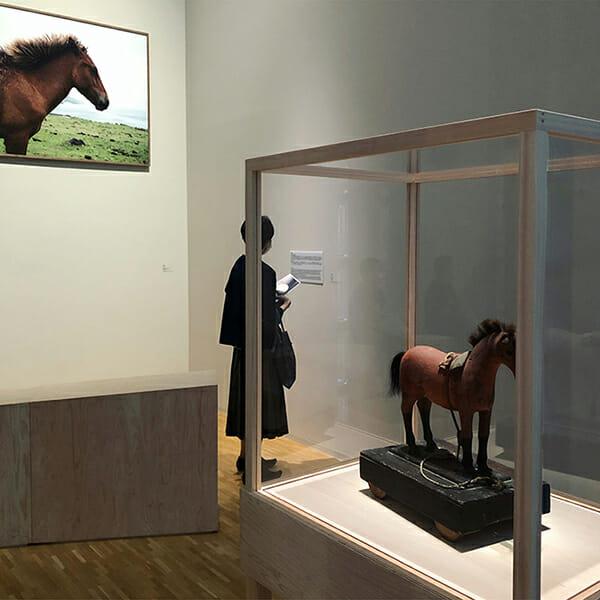 「ベゾアール(結石)」シャルロット・デュマ展