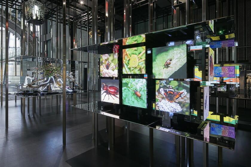 日本科学未来館の新しい常設展示 「計算機と自然、計算機の自然」 (9)