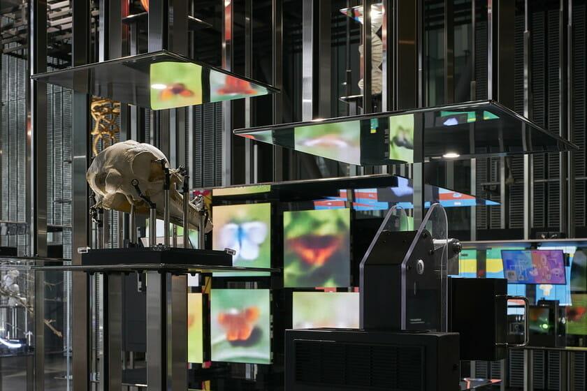日本科学未来館の新しい常設展示 「計算機と自然、計算機の自然」 (10)