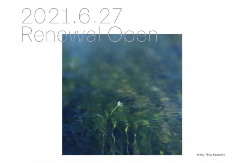 grafがウェルカムゾーンのデザイン統括を担当する「滋賀県立美術館」が6月27日にオープン。VIデザインはUMA/design farm