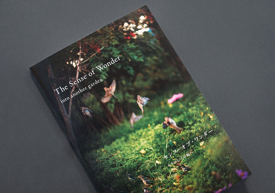 The Sense of Wonder-into another garden