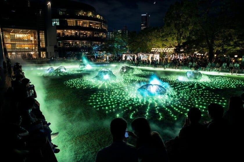 光と霧のデジタルアート庭園